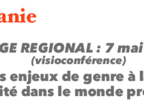 STAGE REGIONAL : 7 mai 2021 (visioconférence)  « Des enjeux de genre à la lutte pour l'égalité dans le monde professionnel »